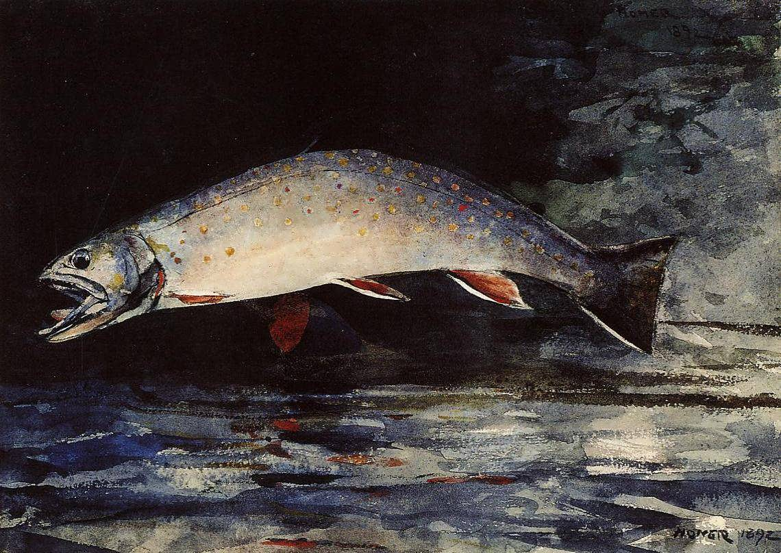 WinslowHomer-ABrookTrout